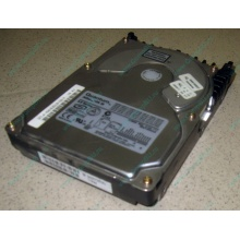 Жесткий диск 18.4Gb Quantum Atlas 10K III U160 SCSI (Лобня)