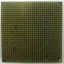 Процессор AMD Sempron 3000+ (1.6GHz) SDA3000IAA3CN s.AM2 (Лобня)